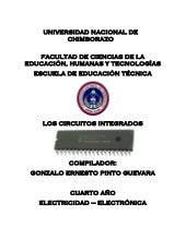 LOS CIRCUITO INTEGRADOS