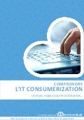 Comprendre l'IT Consumerization - Guilhem Bertholet