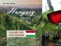 Concept For Wine Business In Hungary Final