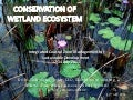 Conservation of wetlands ecosystem
