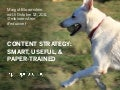 Content strategy SmartUsefulPaperTrained
