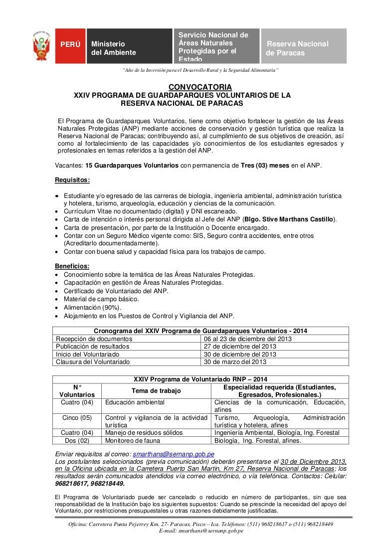 Delighted Formato De Resume 2016 Ideas - Professional Resume Example ...