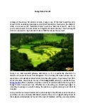Coorg hotels for all