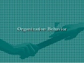 Copy of organization behavior2