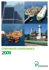 Corporate Governance 2009