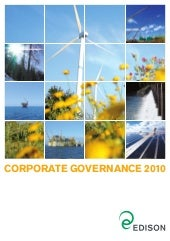Corporate Governance 2010