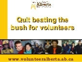Quit beating the bush for volunteer...
