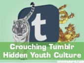 Crouching Tumblr; Hidden Youth Cult...