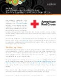 American Red Cross Social Media Case Study for Haiti