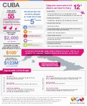Burson-Marsteller Cuba Specialty Team Infographic
