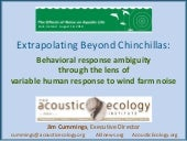 Extrapolating beyond chinchillas: o...