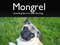 Custom Mongrel Handlers: Learning how to walk the dog