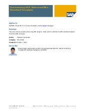 Customizing sap template bex