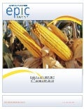 DAILY AGRI REPORT BY EPIC RESEARCH- 05-JAN-2013