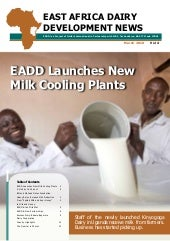 Dairy news vol 4