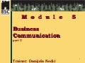Danijela Nedic - Business Communication