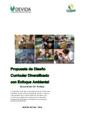 Dcd con enfoque ambiental 2010
