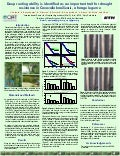 Poster20: Deep rooting ability is identified as an important trait for drought resistance in Canavalia brasiliensis, a forage legume