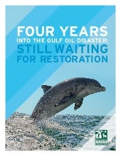 Four Years Into the Gulf Oil Disast...