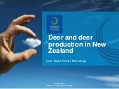 Deer and deer production adobe sess...