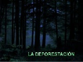 Deforestación by:JoseV