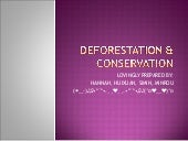 Deforestation & conservation efforts