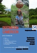 Destination cameroon tourism by global bush travel and tourism