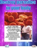 Destroy parasites in your body