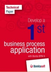 Develop a first business process ap...