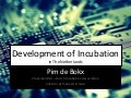 Development of business incubation in The Netherlands   Pim de Bokx - Tunis 18-09-2013