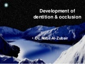 Development of Dentition and Occlus...