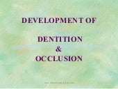 Dev of dentition & occlusion /certi...