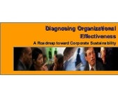 Diagnosing organizational effective...