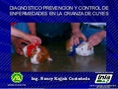 Diagnostico prevencion y control de...