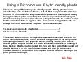 Dichotomous Key 1