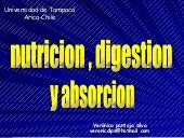 digestion , absorcion y nutricion