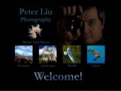 Digital Photography I