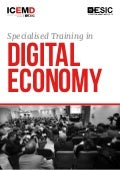 Specialised Training in Digital Economy
