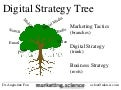 Digital strategy tree rooted in business strategy