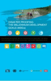 Disaster Proofing The Millennium De...