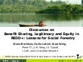Discourses on  Benefit Sharing, Legitimacy and Equity in REDD+: Lessons for Social Forestry