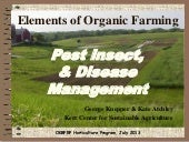 Diseases & pests 2013