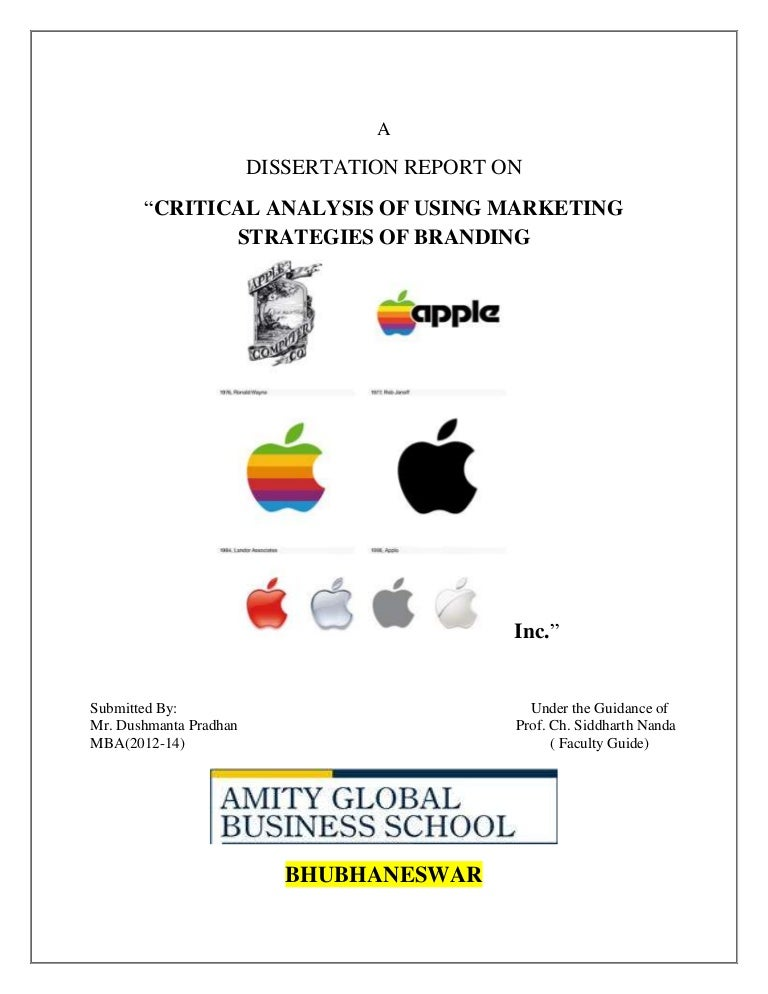 Dissertation report on marketing strategies