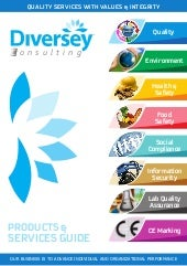Diversey consulting product guide