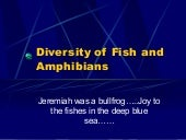 Diversity Of Fish And Amphibians