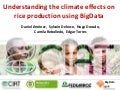 Understanding the climate effects on rice production using BigData