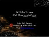 DLF the Primus Call 09555666555 Sec...
