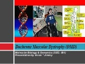 Duchenne Muscular Distrophy