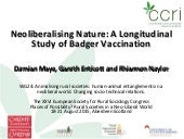 A Longitudinal Study of Badger Vaccination