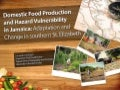 Domestic food production and hazard vulnerability jamaica